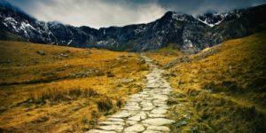 Les chemins pour retrouver la confiance